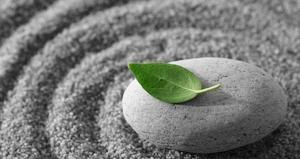 meditation main Full