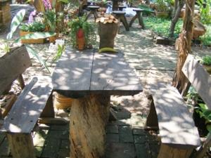 DSCF3511 มุมโต๊ะนั่งในสวนสวย