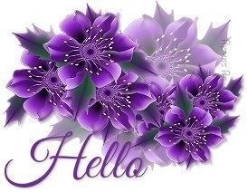 HELLO3