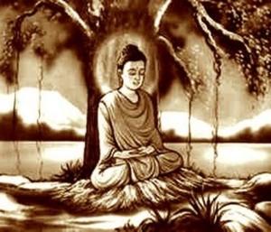 bodhi tree samadi