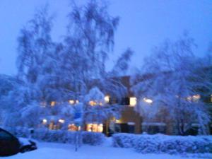 รูปหิมะที่สวีเดน