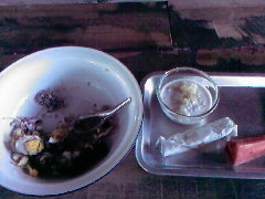 The food that I had eaten there, in the bowl
