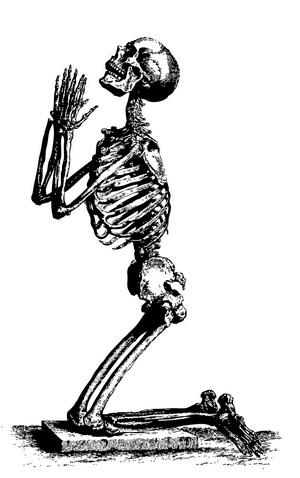 mlf skeleton pd 05 kj0022