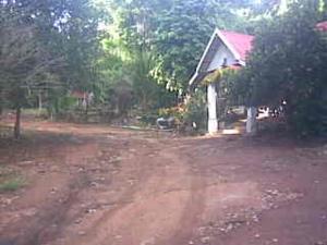 ภาพ035