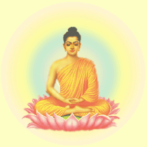 buddha moi
