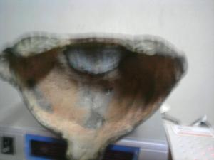 ฐานพระพุทธรูปคาบ