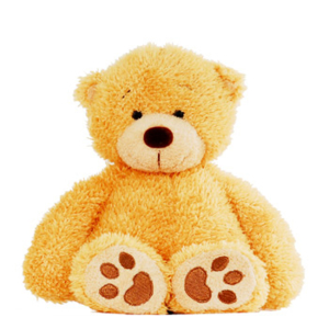1262 honey bear