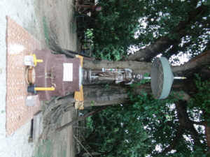 SANY0024