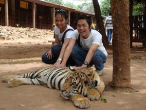 WAT LUNANGTA MAHA BUA WITH TIGER