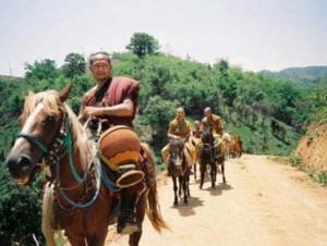 Buddhas Lost Children17