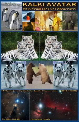 Kalki Avatar 05 - Assistance, Support & Family