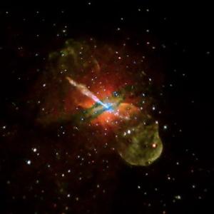 Kalki Avatar 2.11 - Turtle & Variable Forms                              Supernova