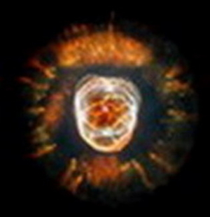 Kalki Avatar 3.16 - Albert Einstein Nebula