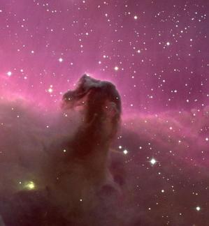 Kalki Avatar 3.10 - Horsehead Nebula