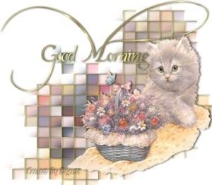 Morning-2
