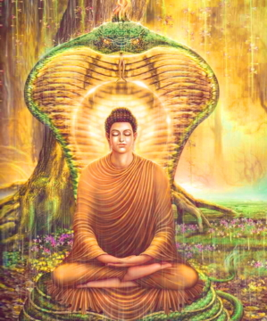 Buddha 213