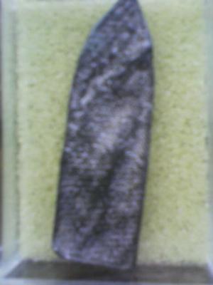 DSC00511
