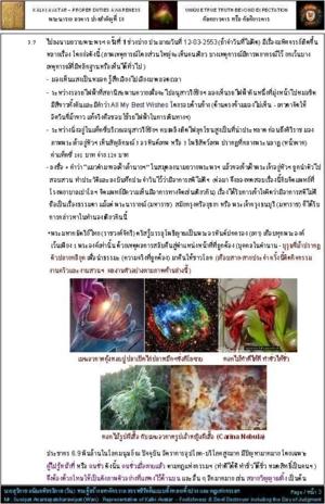 ประวัติส่วนตน หน้า 3