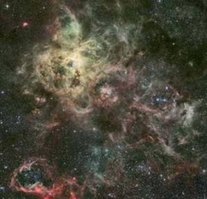 tarantula nebula807 2