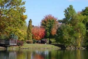 ฤดูใบไม้ร่วง (Fall) ในเมืองใกล้ขณะไปเที่ยวบนถนนที่ชื่อ Blueridge Parkway ซึ่งถือว่าเป็นถนนที่สวยและยาวมาก (คลุมถึง 4 รัฐ)