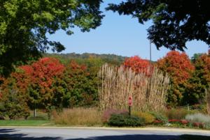 ฤดูใบไม้ร่วง (Fall) ใบไม้เริ่มเปลี่ยนสี นี่เป็นสวนพฤษชาติเรียกว่า Arboretum หรือบางทีเรียก Botanical Garden ในเมือง Asheville, North Carolina
