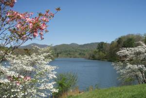 หน้าฤดูใบไม้ผลิ (Spring) ทะเลสาปบ้านใน Asheville, North Carolina