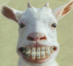 brace teeth