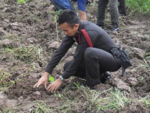 นี่คือโครงการปลูกป่าภายในวัดแม่ยางใหม่ครับ สาธุ