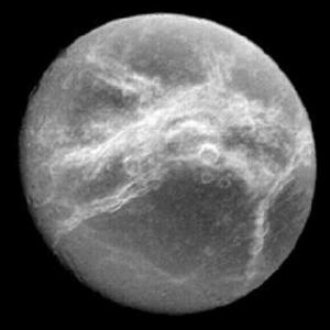 Satern Moon