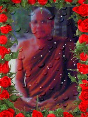 Snapshot 20120219 1