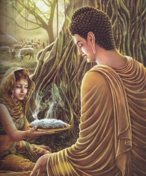 16biography of Lord Buddha