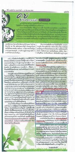 Thailand Prediction Big