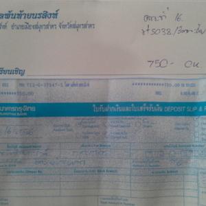 PJ rt5038 20130626