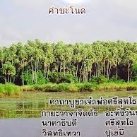 images[2]