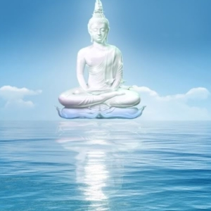 Buddaonsea