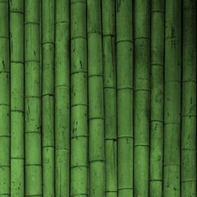ภาพพื้นหลังไม้ไผ่ bamboo 38