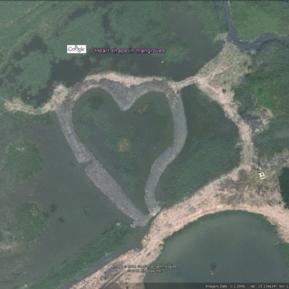 Heart shape in mangroves, Taiwan