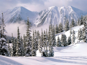 Winter Wonderland, British Columbia, Canada